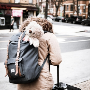 Teddy bear in backpack